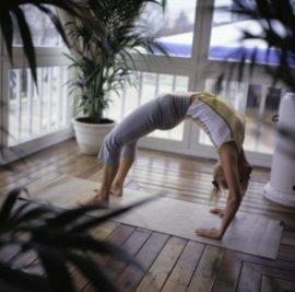 Йога и её основы